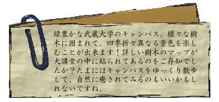 7-2 文章
